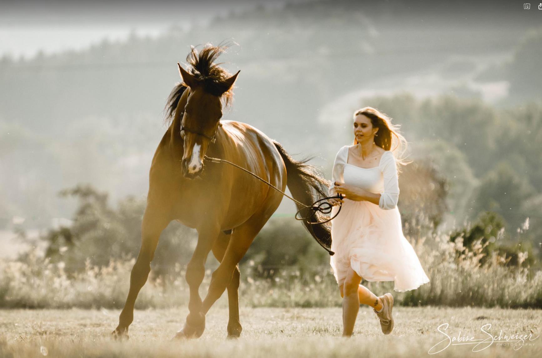 Equus Statera