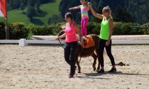 Erlebnisse mit Pferden
