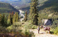 wanderreiten-rocky mountains