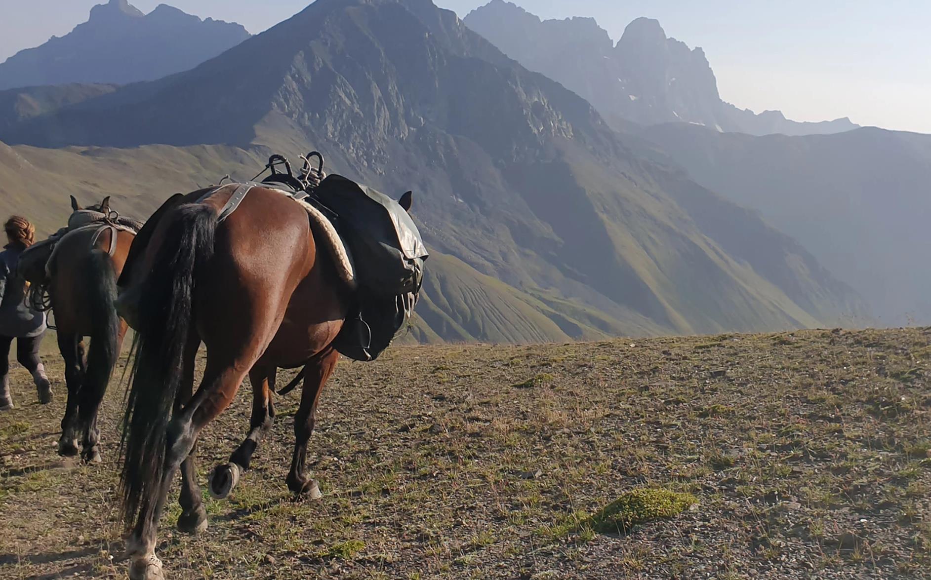 Wanderreiten-Kaukasus