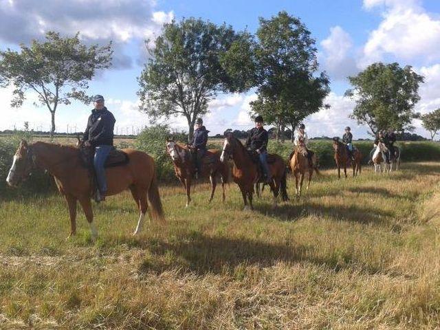 Prettyhorse Farm